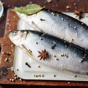 Сельдь – золотая рыбка нашего стола