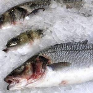Купить замороженную рыбу и получить пользу для здоровья